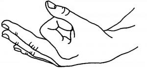 chin mudra (gesto psichico della coscienza)