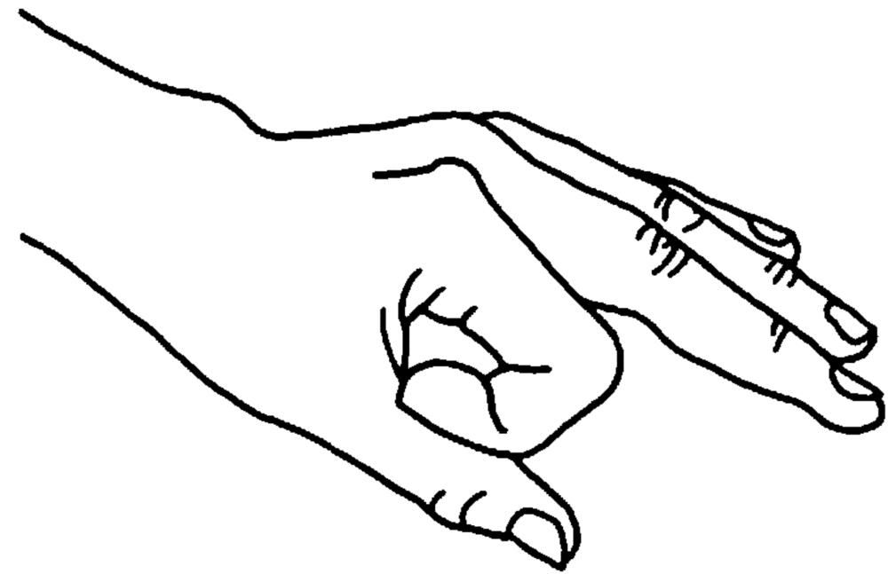 gyana mudra (gesto psichico della conoscenza)