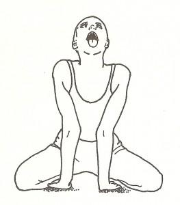 simhasana (posizione del leone)
