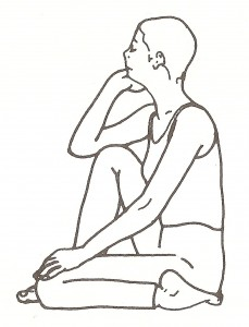 Virasana (posizione dell'eroe)