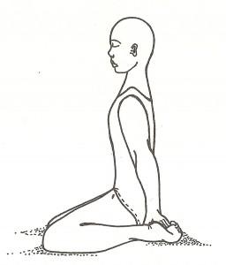 Ananda madirasana (posizione della beatitudine inebriante)