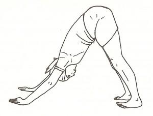 Sumeru asana (posizione della montagna)