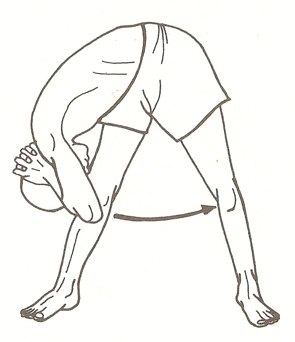 Dolasana (posizione del pendolo)