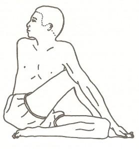 ardha matsyendrasana - posizione di mezza torsione della colonna vertebrale