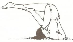 sarvangasana - variante