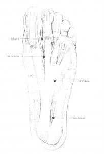 Ayurveda - Marma del piede