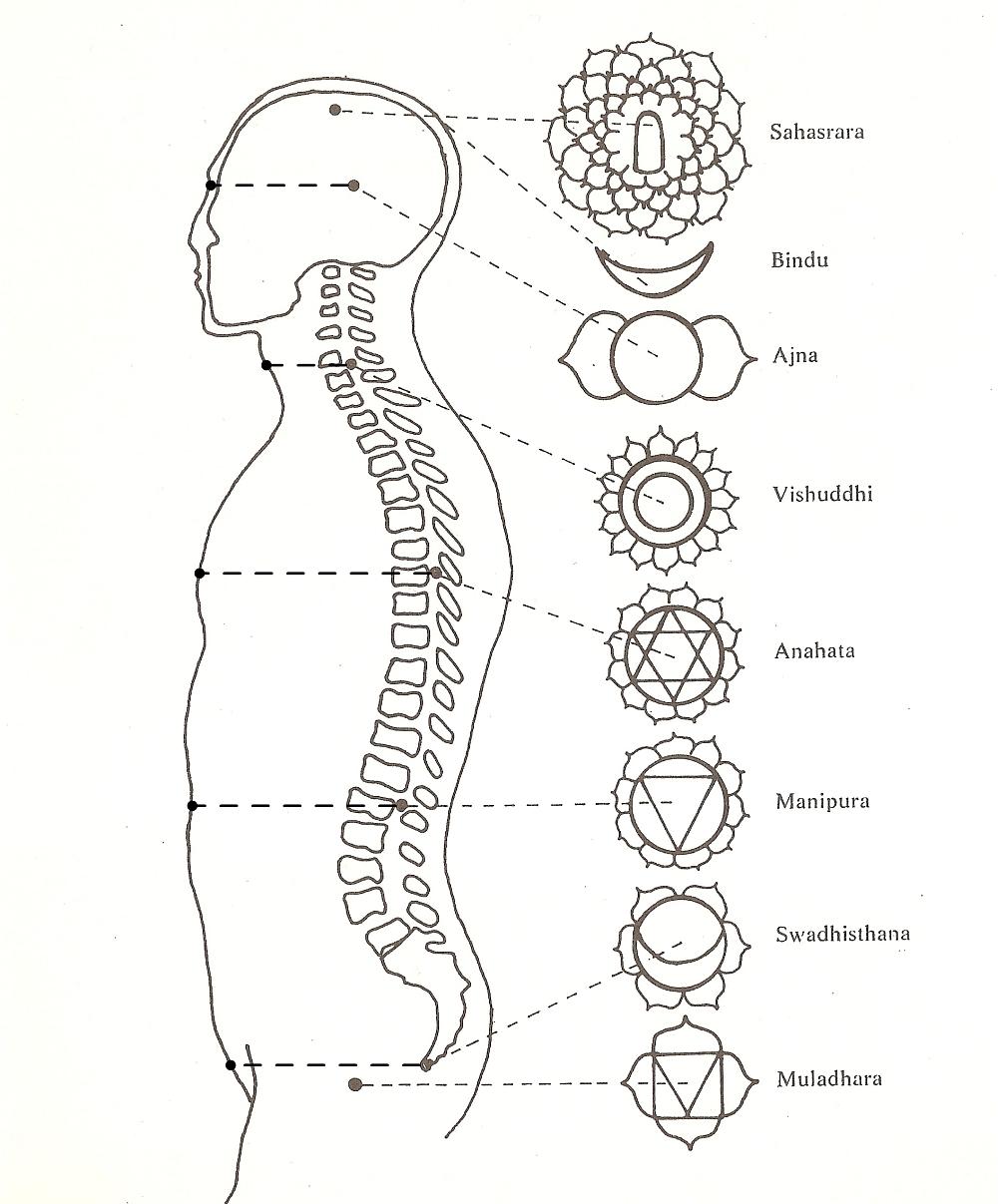 localizzazione dei chakra kshetram