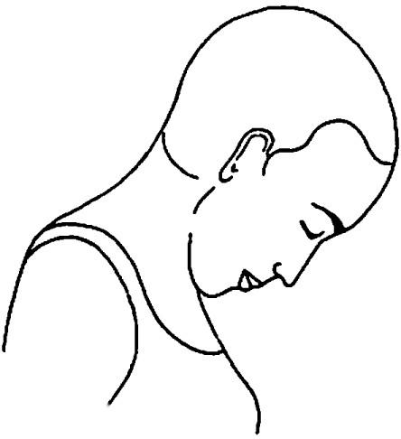 Griva Sanchalana (Movimento del collo) - Fase 1