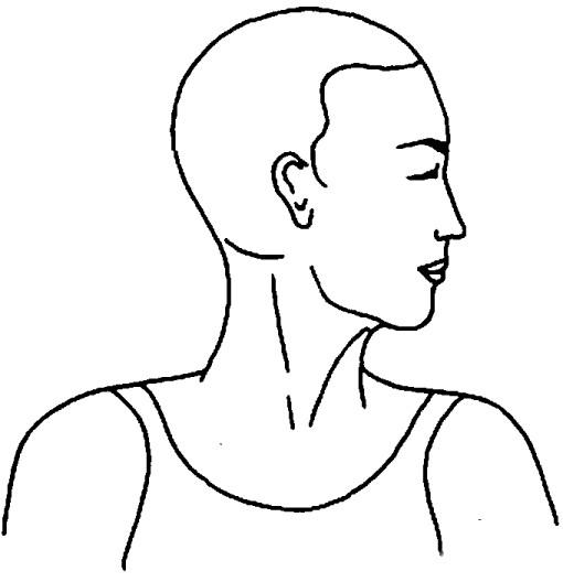 Griva Sanchalana (Movimento del collo) - Fase 3