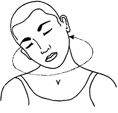 Griva Sanchalana (Movimento del collo) - Fase 4